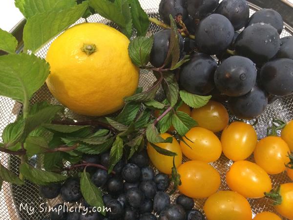 ハーブ&ビタミンたっぷり、シンプルで美味しいのはどの組み合わせ!?