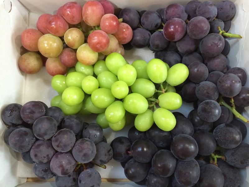 ms_grape