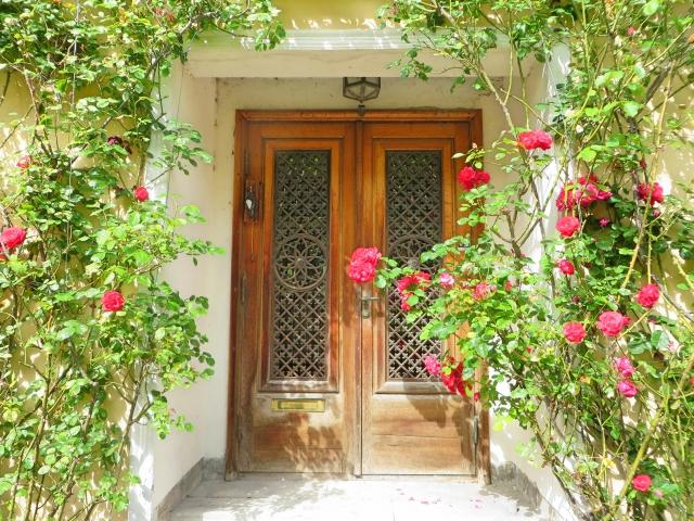 ms_red.rose.door
