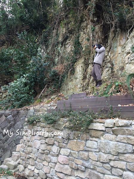 ms_camerawoman