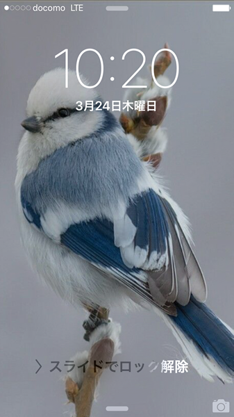 ms_iphone6s_1